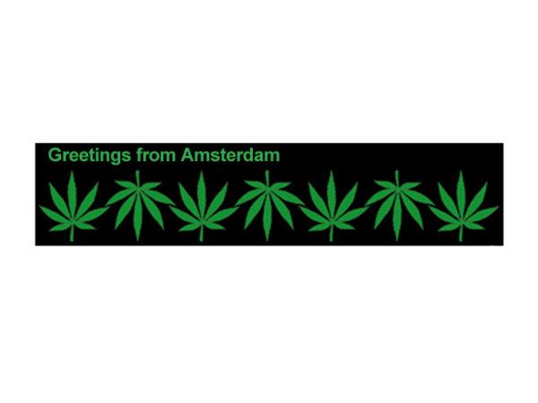 Tee Shirt Blanc Amsterdam Feuilles de Cannabis à Manches Courtes