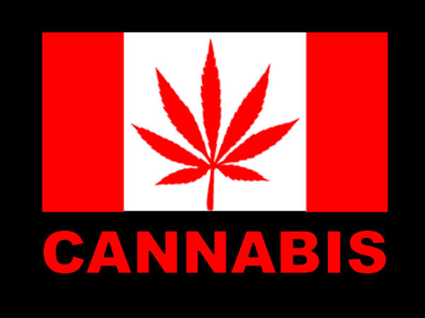 T-Shirt Noir à Manches Courtes avec le Drapeau Canadien Pro Cannabis